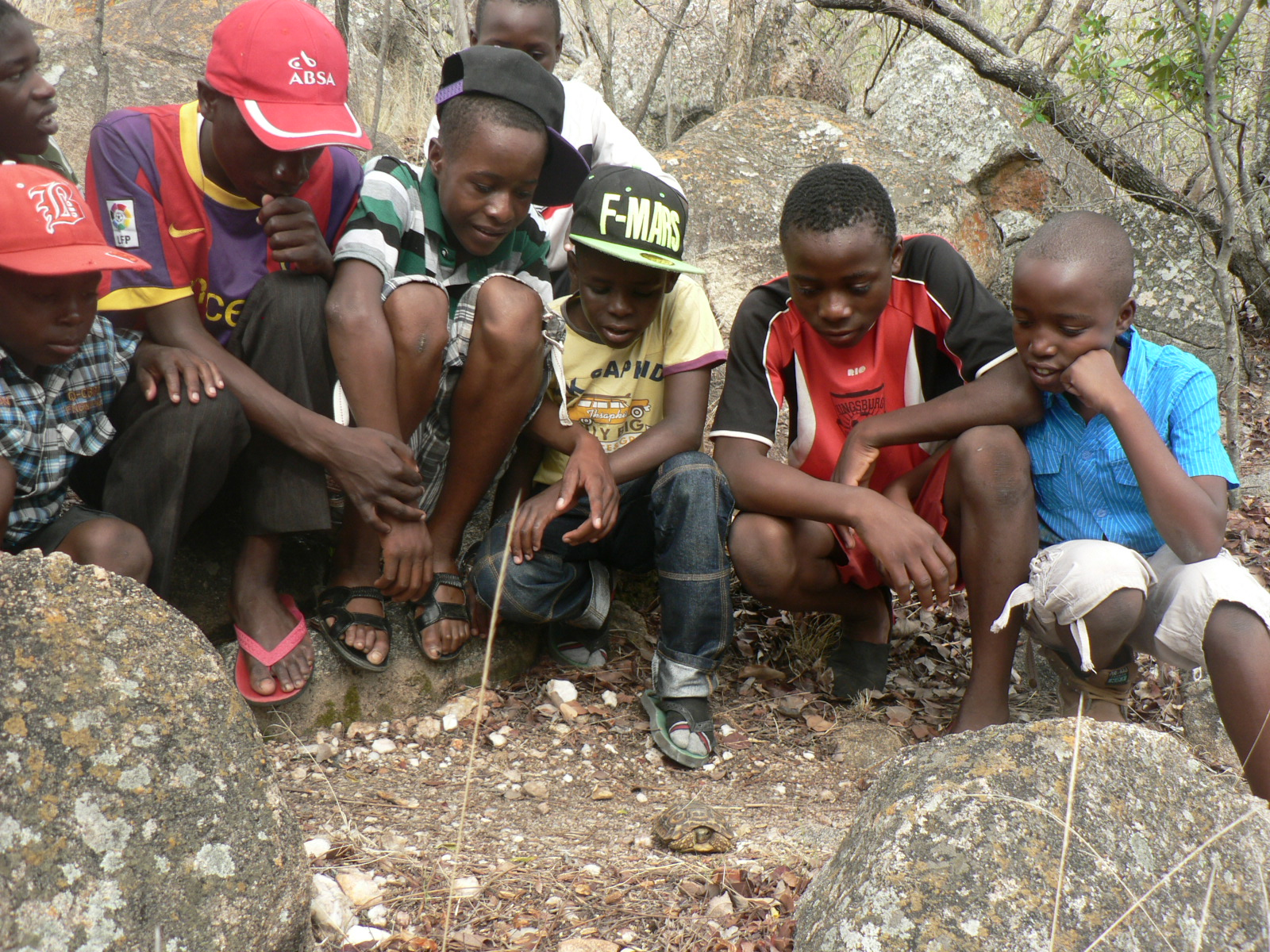 Peza Trust- conservation